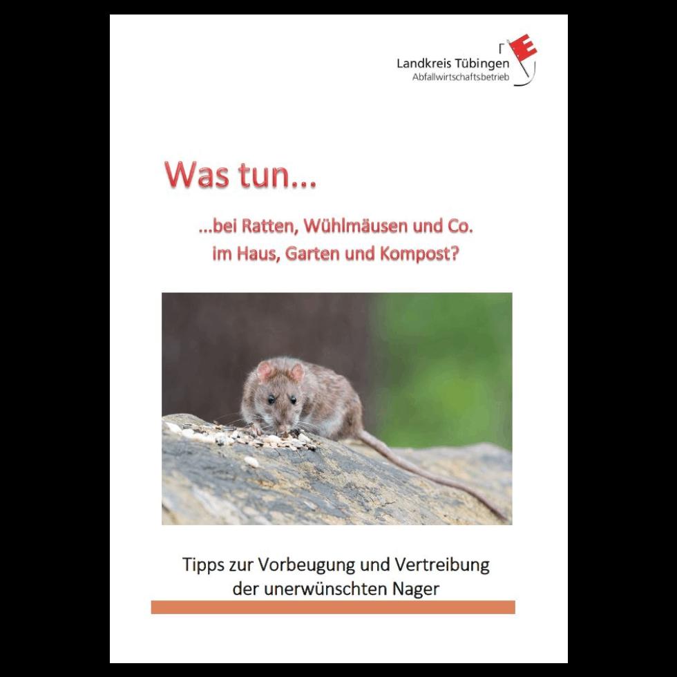 Was tun bei Ratten? – Landkreis Tübingen – Abfallwirtschaftsbetrieb Farbe